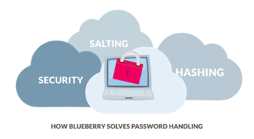 How Blueberry Solves Password Handling Blueberry Consultants