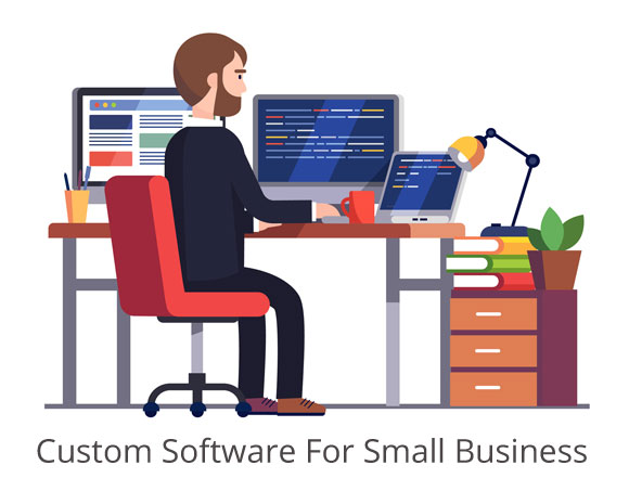 Custom Software For Small Business Blueberry Consultants