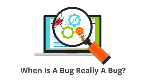 When Is A Bug Really A Bug? Blueberry Software Development